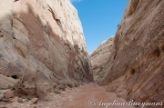 Capitol Reef Canyon