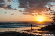 Illaroo Sunrise